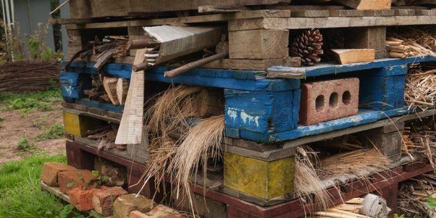 Bygg ett hotell för bin av lastpallar