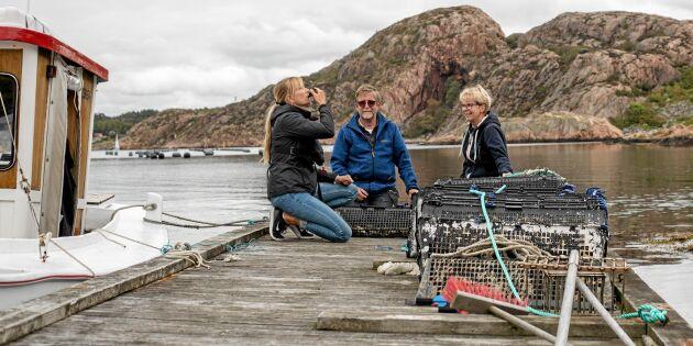 Svenska ostron och musslor lockar turisterna till Lysekil
