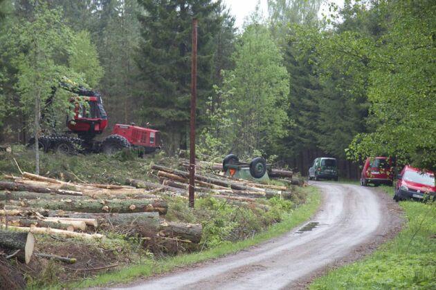 EUs timmerförordning innebär bland annat att enskilda skogsägare, i 5 år, måste spara uppgifter om volym, sortiment, trädart och köpare i samband med en avverkning.