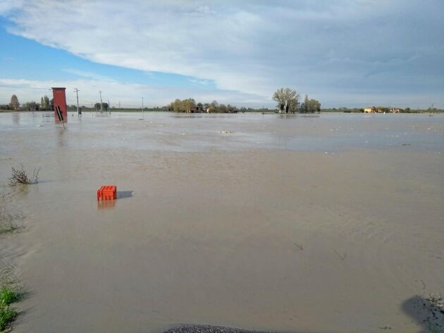 """""""Än har vattnet inte dragit sig undan, så vi kan inte se vilka skador fälten fått"""", säger potatisodlaren Alberto Zambon."""