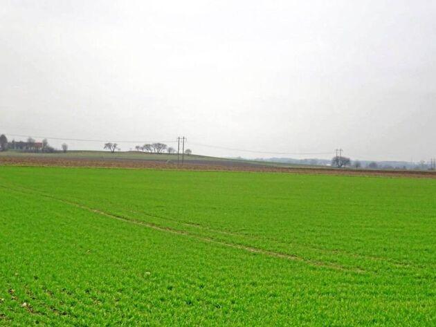 Den aktuella åkermarken är i ett skifte, något som tenderar att dra upp priserna. En sockerkvot på cirka 51 ton ingår i fastigheten öster om Tomelilla.