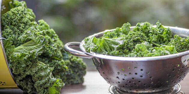 5 vetenskapliga skäl till att du ska äta grönkål – varje dag