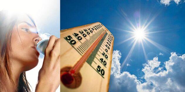 Extremvärmen: 6 livsviktiga hälsoråd – tumma inte på dem!