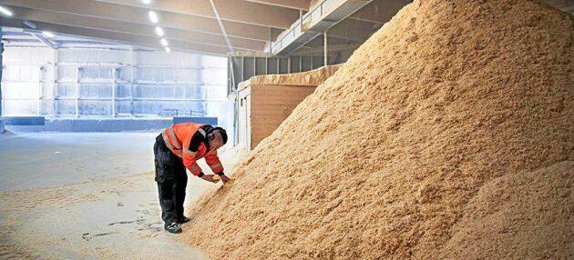 Med en pyrolysanläggning för en kvarts miljard kronor vill Setra börja göra bioolja av sågspån.