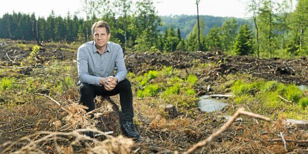 Första skadorna av skarptandad barkborre i södra Sverige