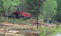 Grov stöld ur skogsmaskin