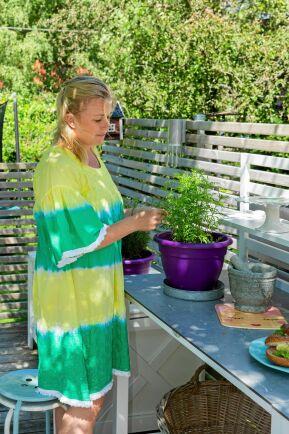 Det fräscht gröna hos tagetesplantan framhävs av att den placerats i en mörklila kruka. Uteköket används självklart även för växtvård.