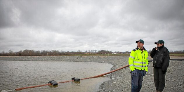 Nya dammen räddar årets vallskörd