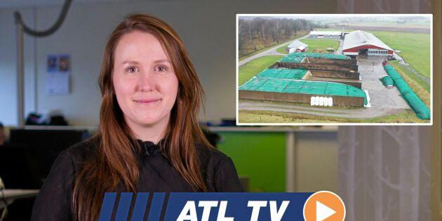 ATL TV: Lönsamt med egen gas