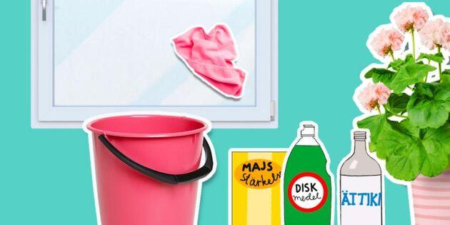 Billigt och bra för miljön: blanda din egen fönsterputs!