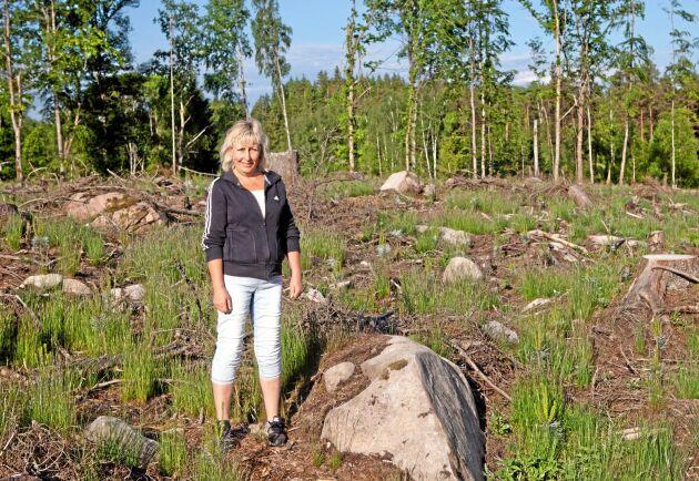 Annalena Crona har 20 hektar skog vid sitt föräldrahem, efter inrådan från Skogsstyrelsen har hon planterat och sått tall på sin mark.