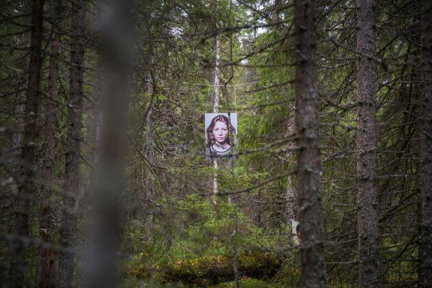 Ett porträtt i skogen.