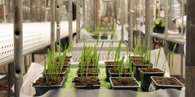 Agronomer behövs – men utbildningen måste utvecklas