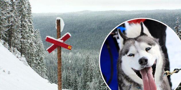 Snöbristen allvarligt hot mot svensk vinterturism