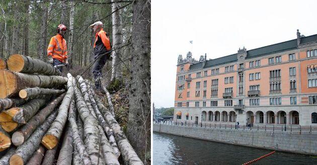 Klocka tio presenterar Sven-Erik Bucht regeringens sitt stödpaket till skogsbruket på Rosenbad.