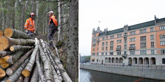 Nu kommer stödpaketet till skogsbruket