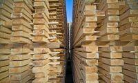 Bra första kvartal för skogsexporten