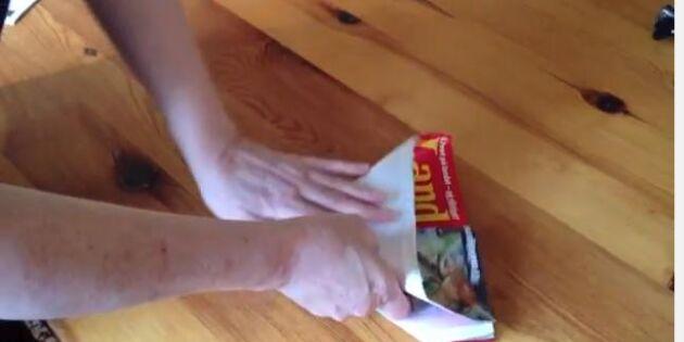 Äggskal till fröerna? 6 smarta såkrukor du kan fixa själv!
