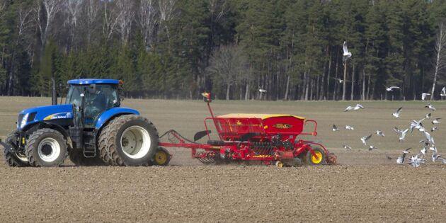 Här är bonden störst på ekologisk odling