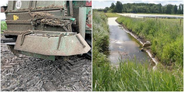 LRF: Lantbrukarnas miljötjänster glöms bort
