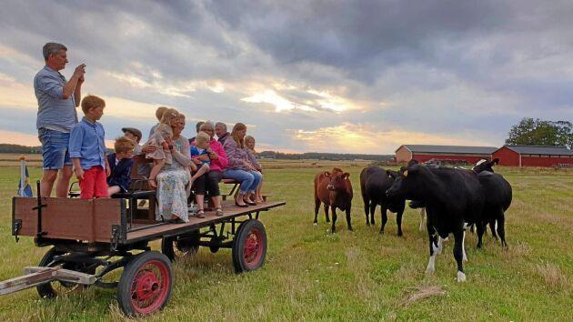 Skicka in din bästa bild du också! Mejla fof@landlantbruk.se eller märk bilden #gårdsbilden på Instagram.