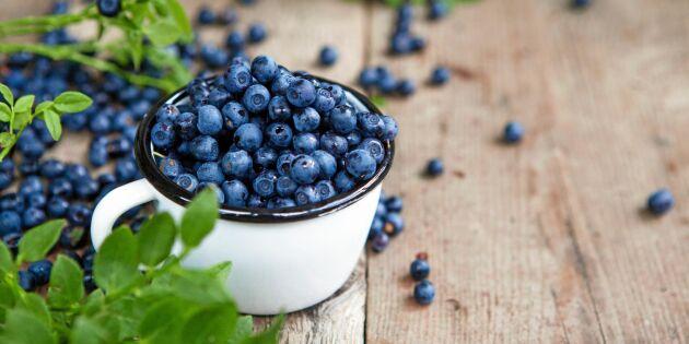 9 hälsoskäl att frossa i blåbär!