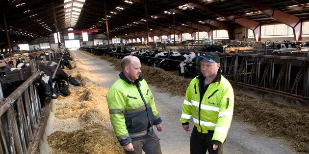 Mjölkbönder vann mot länsstyrelsen
