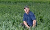 Ekologiska lantbruk tjänar mest