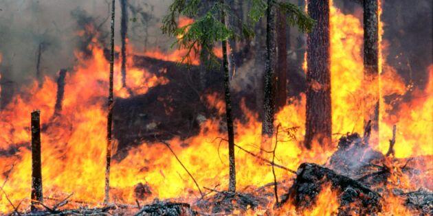 Varning för brand i skog och mark