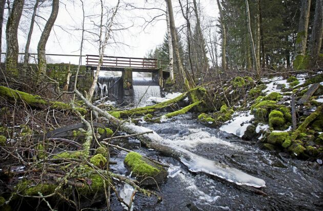 Historiska dokument tyder på att dammbyggandet i området runt Ackkärr startade redan på 1200-talet sedan Risberga kloster hade byggts.