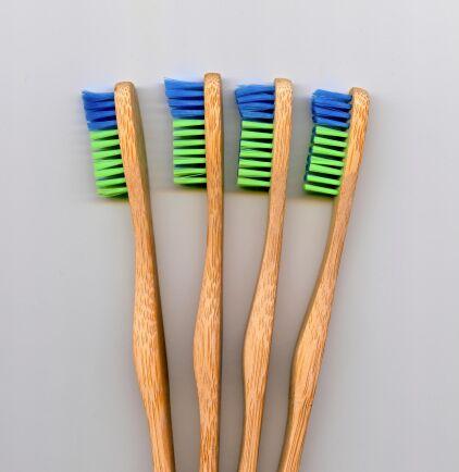 Tandborstar gjorda av bambuträ har kommit in på marknaden, som ett miljövänligt och hållbart alternativ till plasttandborsten.