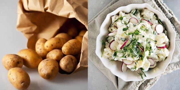 Potatissallad med timjan och dijon