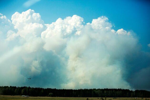 Brandens koldioxidutsläpp blev enorma: de motsvarar en miljon bilar som kör 1 500 mil var.