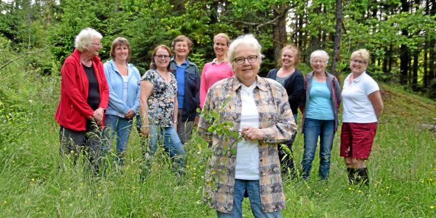 Qvist – för starka kvinnliga skogsägare