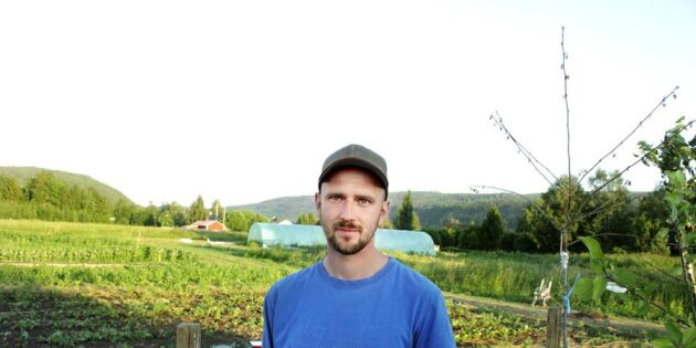 """Grönsaksodlaren Niklas Markie: """"Kunderna betalar min månadslön"""""""