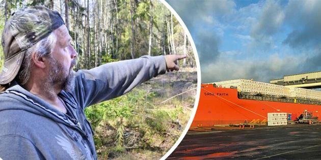 Historisk virkeslast och 400 träd fällda på fel fastighet