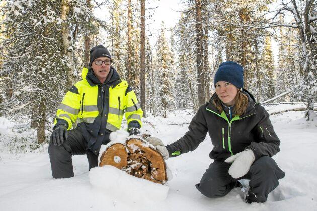 Anders Forsgren, Bolidens projektledare och biologkonsulten Maria Nordlund synar en av de skyddsvärda stockar som flyttats från Aitiks gruvområde och hit till kompensationsskogen ett par mil bort. Varje stock är märkt med ett nummer av forskarna.