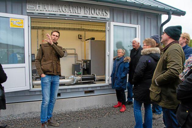 Halla gård i Edsvära, Vara kommun, satsar på att så långt som möjligt ha ett slutet kretslopp med biogas och eget proteinfoder. Nästa år mer än fördubblas grisproduktionen i form av ett eget koncept med möjlighet till utevistelse. Köttet ska marknadsföras av Scan under namnet Här & Nu.