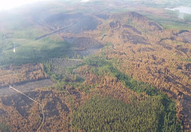 Här syns tydligt hur färgskala varierar från hyggen, stående brandskadad skog och oskadad skog. Bilden är tagen från helikopter i Kårböleområdet i Ljusdals kommun.