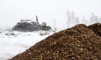 Trädbränsle fortsätter falla i pris