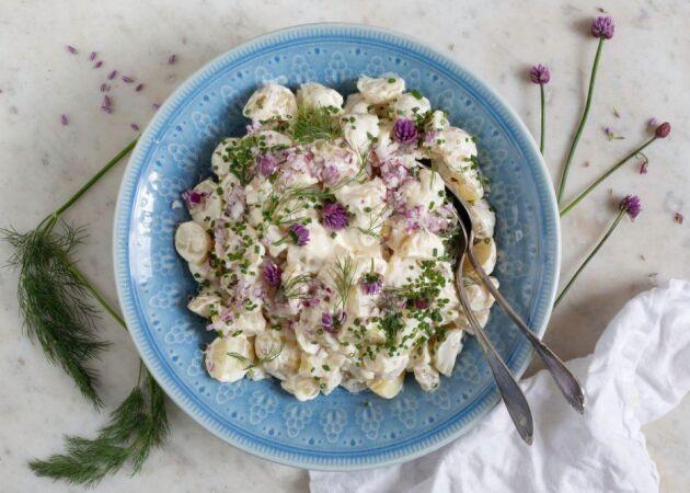 Klassisk potatissallad – extra krämig och god