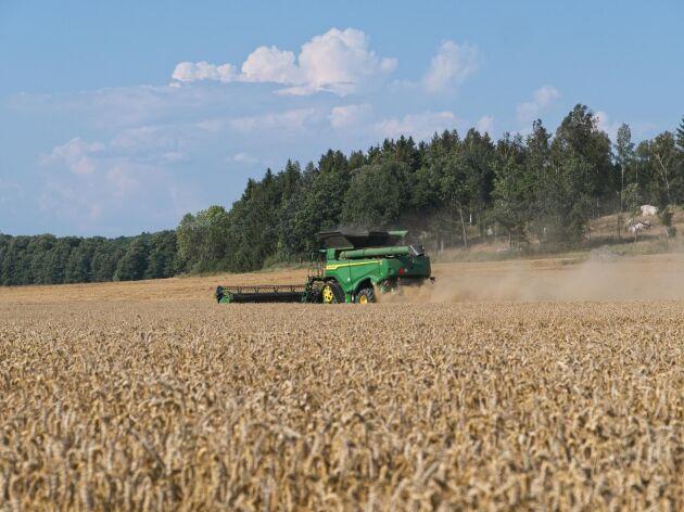 Det är fel att påstå att Kravodling är mer hållbar än konventionell odling, anser Holger Karlsson i ett svar till Krav.