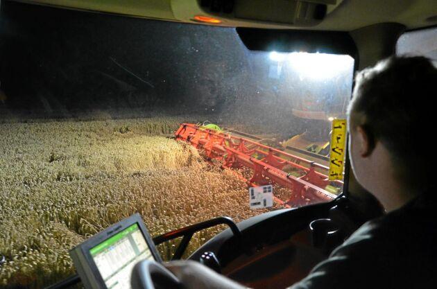 Brorsonen Simon Drevås sitter i traktorn och tar hand om tömningen för vidare transport hem till gården.