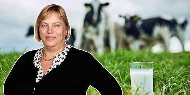 Blir mjölkbönderna politikens förlorare?