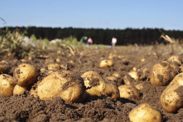 Efter fyra år avgörs fallet om markanvändning mellan Eskilstuna kommun och en lantbrukare i Sörmland.