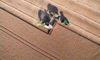 Efter torkan: Sämsta skörden på 60 år