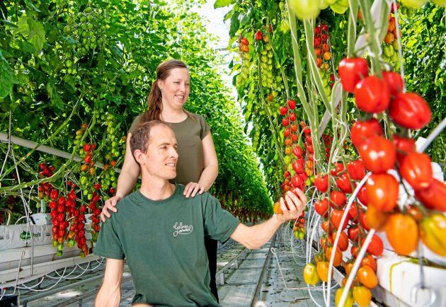 En kavalkad av sorter och färger är vad som möter besökaren i Anette och Peter van Schies växthus på Gällenäs.