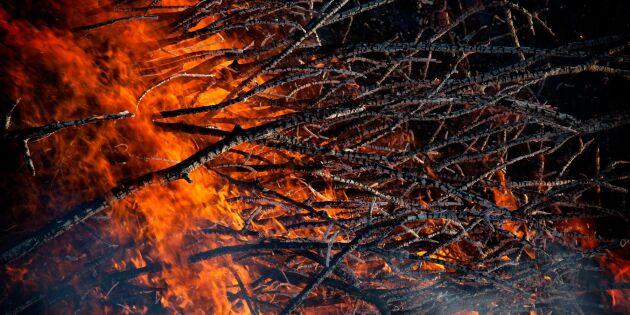 Risk för skogsbränder i hela Sverige