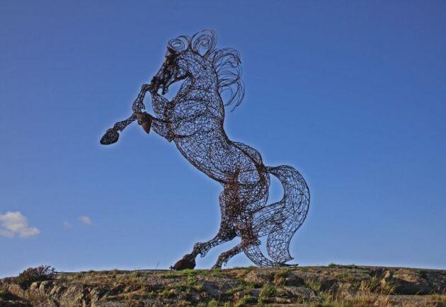 Beduinernas stolthet. Konstnären Mohannad Soleman från Syrien valde att göra skulptur i järntråd för att visa betydelse av de syriska arabhästarna. Skulpturen finns Uddevalla.