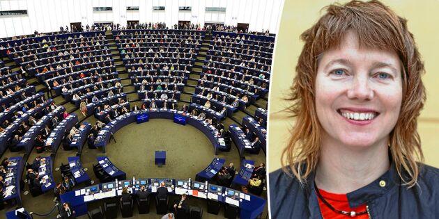 Påverkan under radarn i EU-parlamentet